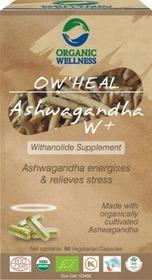 Organic Wellness Ashwagandha Żeń Szeń Organic Wellnes Indie 90 Kapsułek 5361-59899_20161009204428