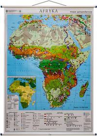 Afryka mapa ścienna gospodarcza 1:8 000 000 PPWK