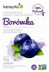KenayAG Borówka ekstrakt z owoców 25% 50g KENAY AG