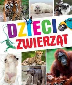 Olesiejuk Sp. z o.o.praca zbiorowa Dzieci zwierząt