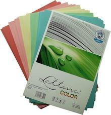 LETTURA Papier LETTURA PAPIER KSERO MIX A4 arkuszy 990029
