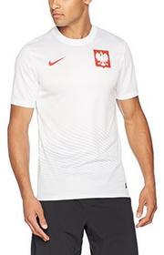 Nike Pol M H/A Supporters Tee oficjalna koszulka piłkarska, wielokolorowa, S 724632-100_S