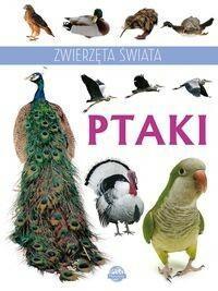 BOOKS Zwierzęta świata Ptaki - Praca zbiorowa
