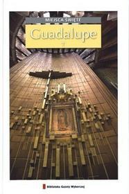 Agora Miejsca święte, tom 11. Guadalupe - Biblioteka Gazety Wyborczej