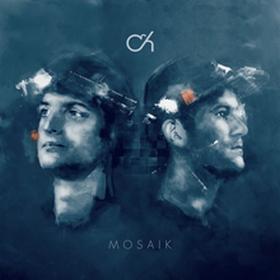 Mosaik CD) Camo and Krooked
