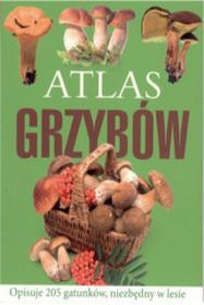 Bellona Sławomir Sokół Atlas grzybów