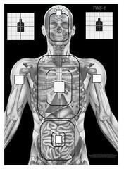 TM / POLSKA Tarcze sylwetkowe Skeleton pakiet 5 szt + DARMOWY ZWROT (TWS-1S) TWS-1S