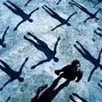 Muse Absolution CD) Muse