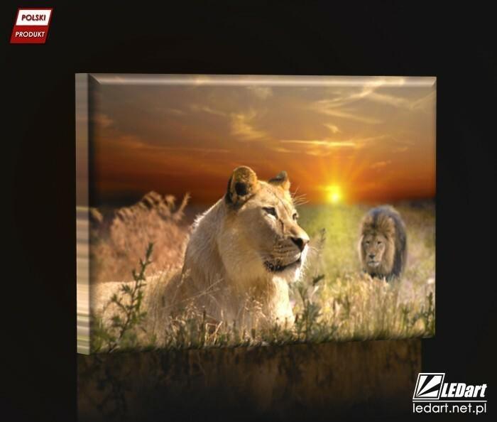 Ledart Lwica Obraz Podświetlany Led Obraz Led 47 Ceny I Opinie Na