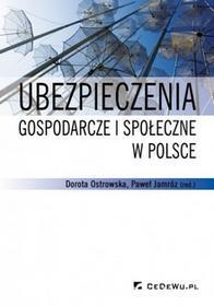 Ostrowska Dorota, Jamróz Paweł Ubezpieczenia gospodarcze i społeczne w polsce - mamy na stanie, wyślemy natychmiast
