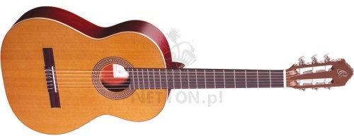ORTEGA Tradycyjna hiszpańska gitara klasyczna Ortega R200 z pokrowcem 2614
