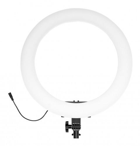 Newell Lampa pierścieniowa LED RL-18A WB 3200 K 5500 K) 71502