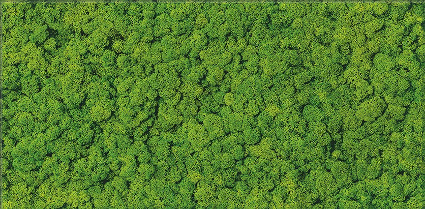 Cersanit Fresh Moss Glass Inserto Płytka ścienna 29x59  zielony