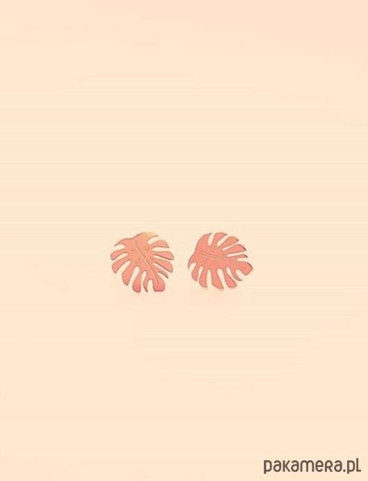 Różowe złoto monstera kolczyki