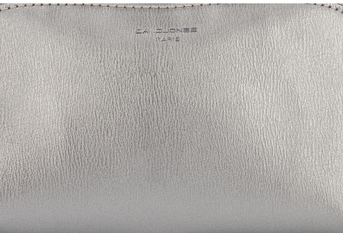 David Jones Uniwersalne Kosmetyczki Damskie Organizery w rozmiarze S firmy Srebrna (kolory) CM3601Ssr