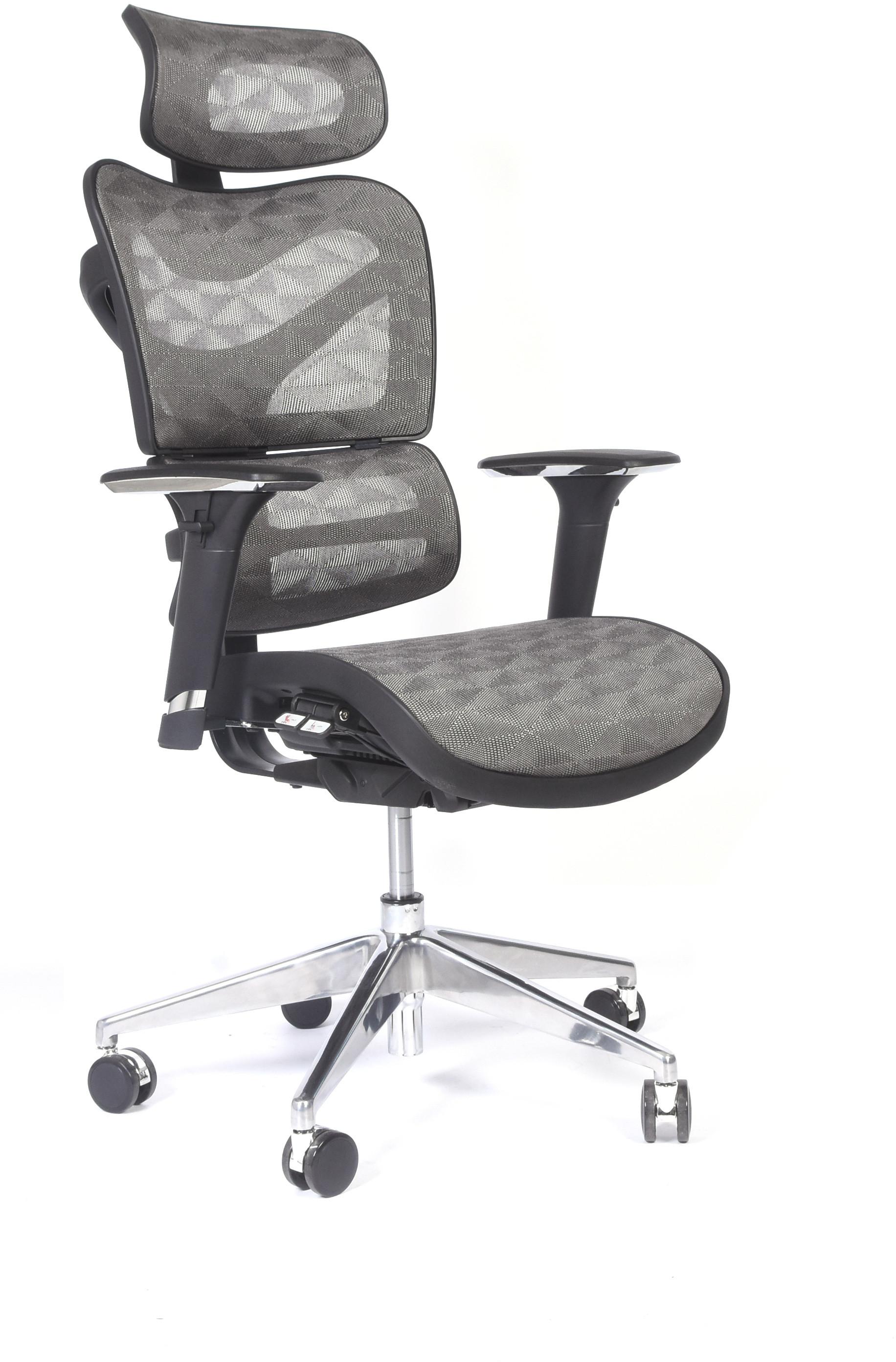 Bemondi Ergonomiczny fotel biurowy ERGO 600 JNS-726B W16