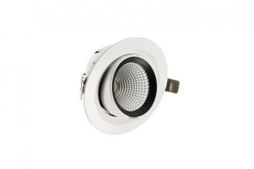 Bergmen 35W Downlight Enix Pro Move LED 180 mm 01-005-057-02-04-35