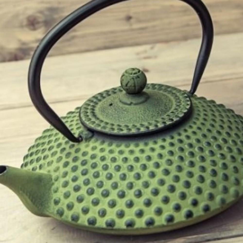 Bredemeijer Zestaw Xilin żeliwny zielony pojemność 1,25