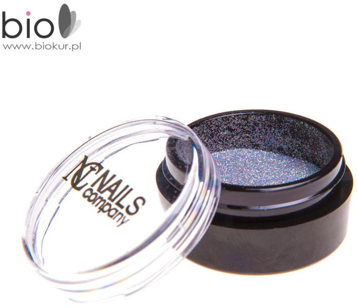 Nails Company Holo Powder 2