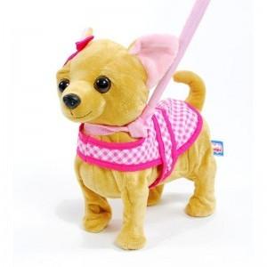 Madej Pies chodzący na smyczy Chih