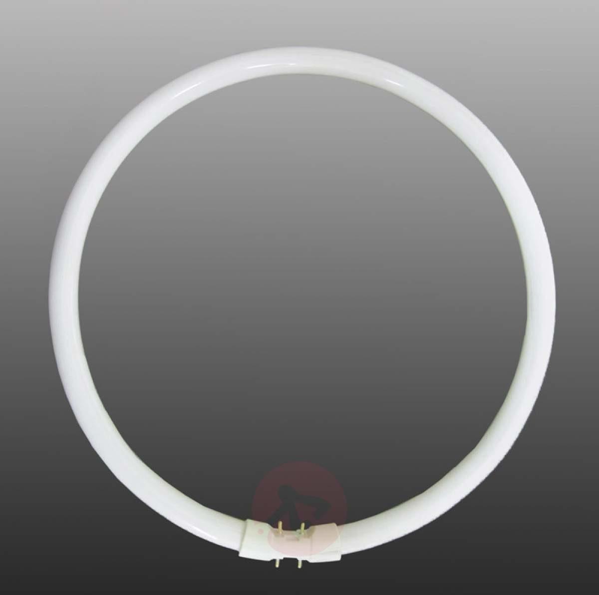 Sylvania Świetlówka kołowa GX13 T5 40 W, uniwersalna biel