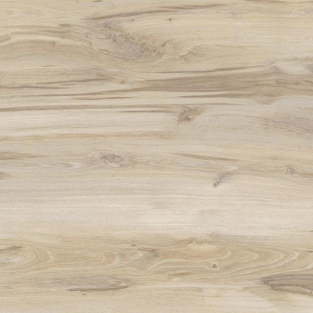PROMO FLOORING Panel podłogowy laminowany DĄB PICARD AC4 8 mm PROMO FLOORING