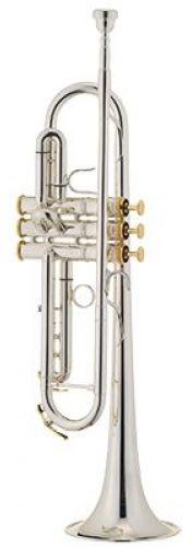 Xo Brass Xo Brass XO1602RSR3