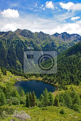 rorue Fototapeta lato, las, wycieczka, góra, chmura