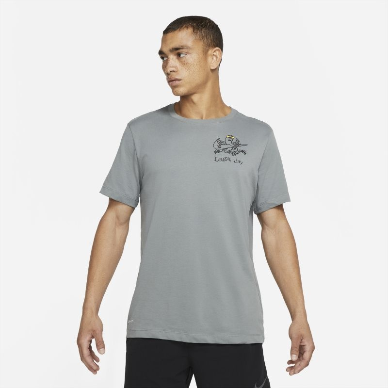 Nike Męski T-shirt treningowy Dri-FIT - Szary CV5222-073