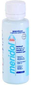Meridol Dental Care płyn do płukania jamy ustnej bez alkoholu 100 ml