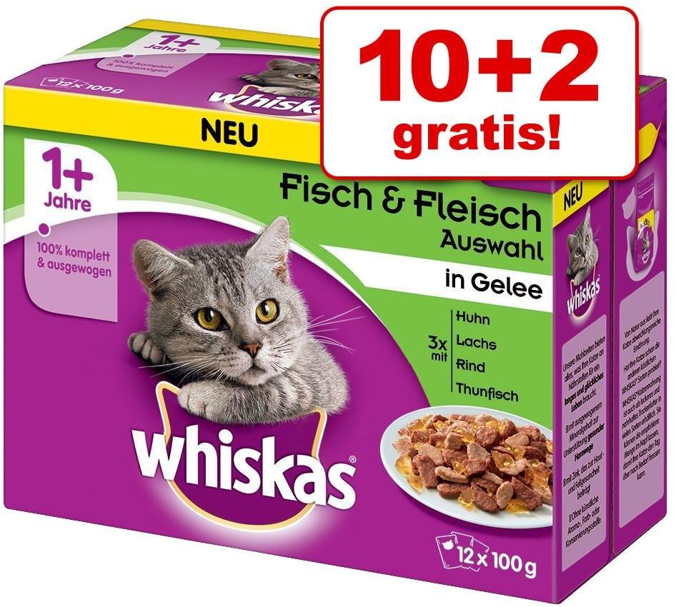 Whiskas Megapakiet 1 + saszetki 96 x 100 g Wybór dań mięsnych i rybnych w galarecie