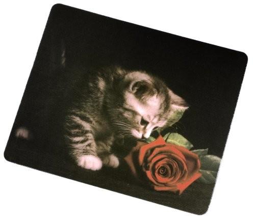Hama kot z różą Silk Pad