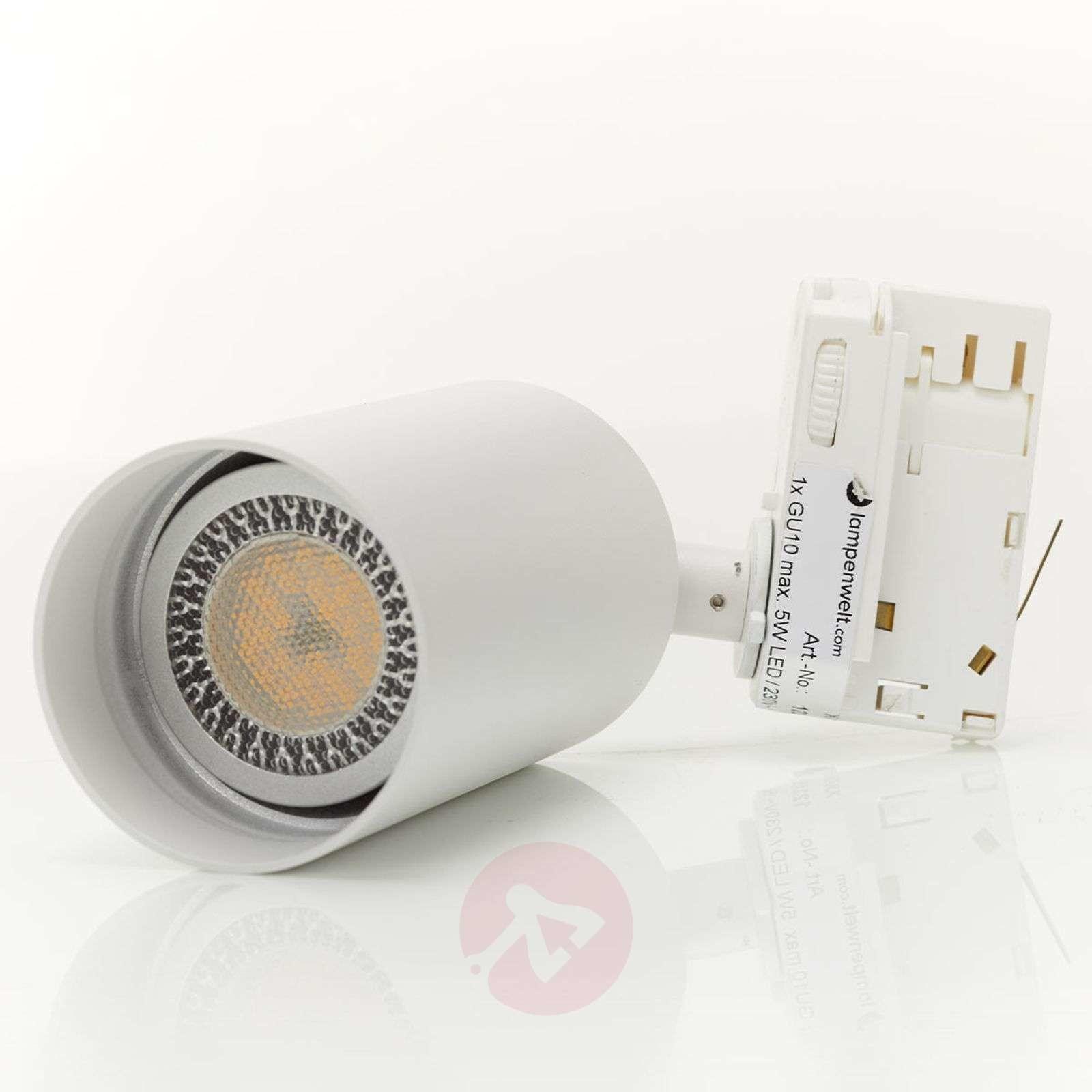Lampenwelt com 3-fazowy reflektor Brinja, system szynowy, biały