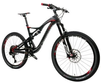Bottecchia Rower górski MTB Fedaia M19 Karbonowy mat