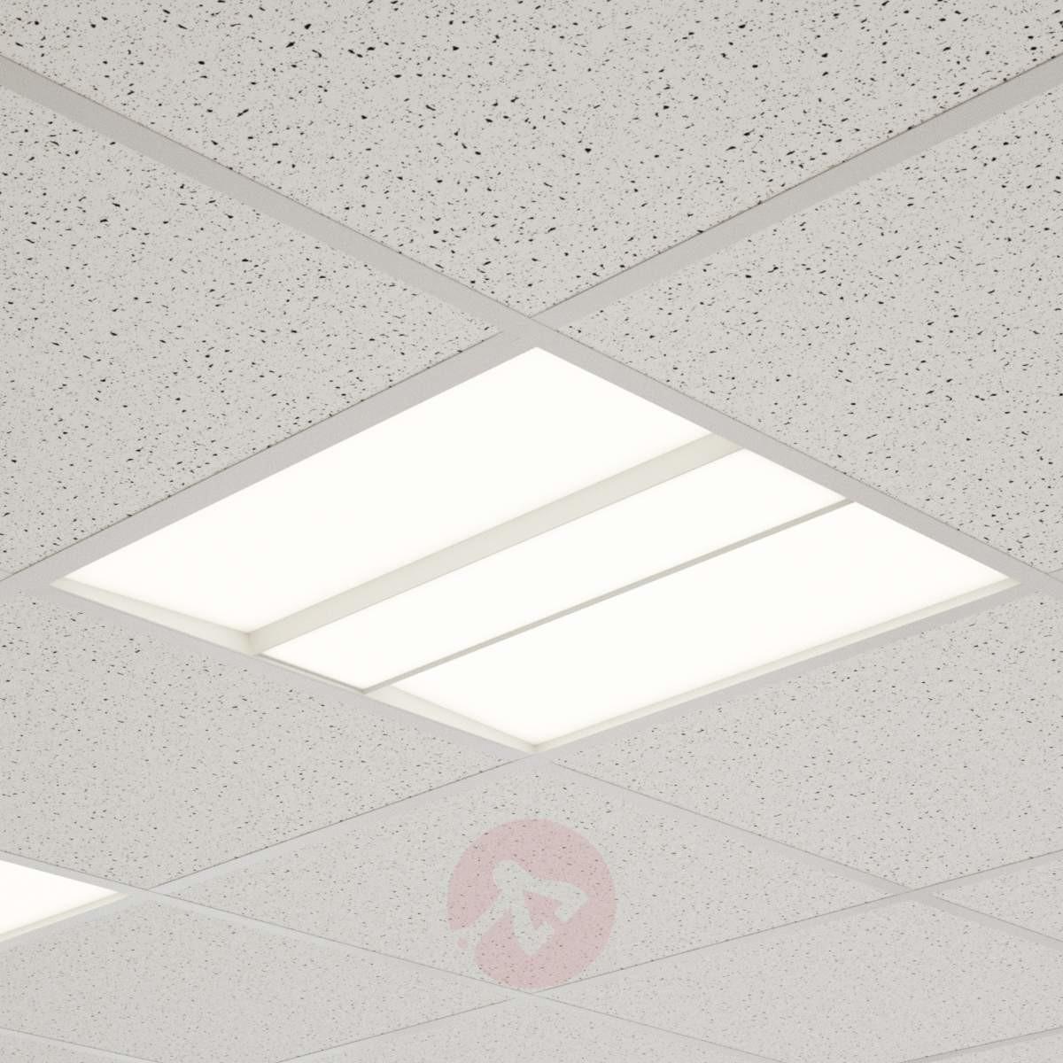 Lampenwelt com Panel LED Malo do sufitów rastrowych, 62 cm x 62cm