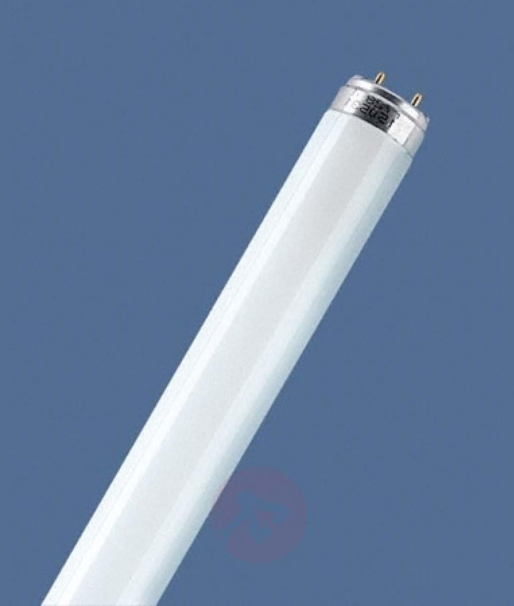 Osram G13 T8 58W 865 świetlówka LUMILUX