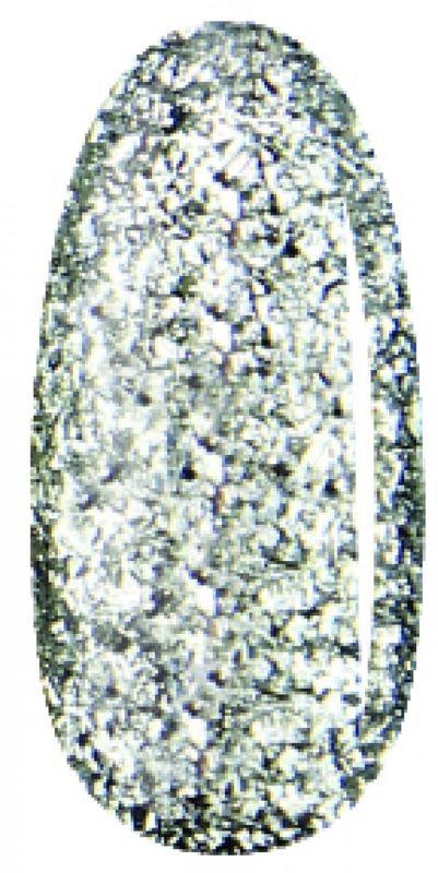 DUOGEL DUOGEL 109 Platinium - lakier hybrydowy 6ml 9870-uniw