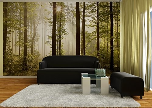 AG Design ftns2447jutro lesie, fototapeta, tapeta z włókniny 4części, 360x 270cm Multicolor FTNS2447