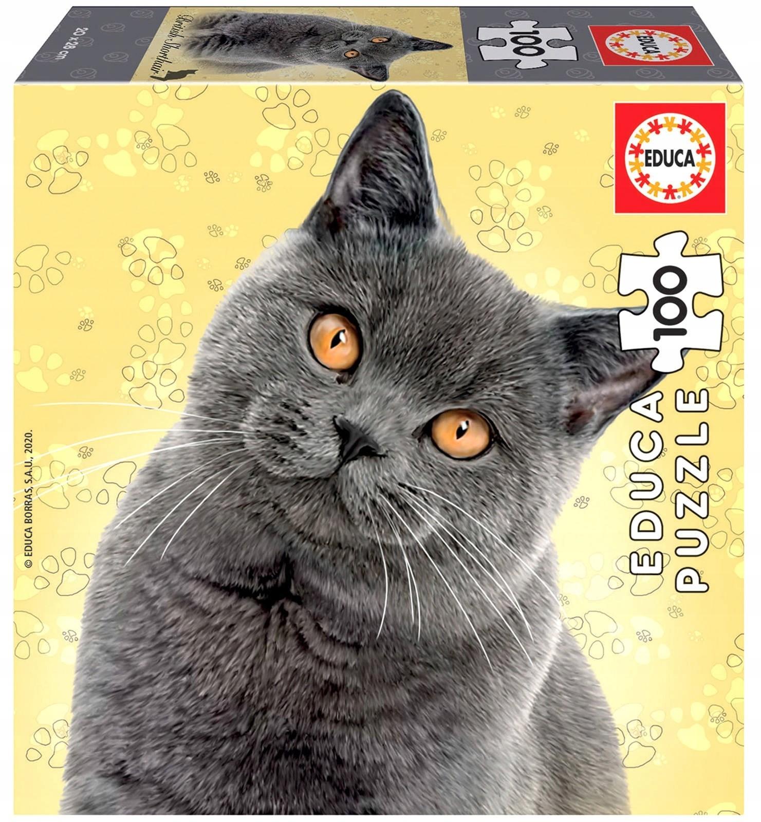 Puzzle 100 el. Koty - Brytyjski krótkowłosy