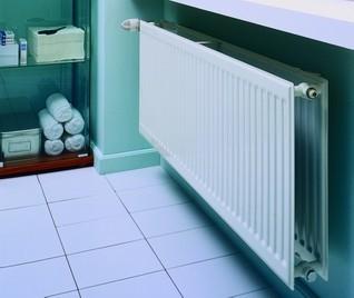 Purmo Grzejnik płytowy Hygiene H10 550x1100