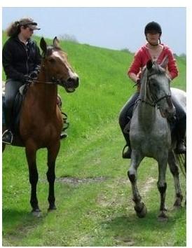 Nauka jazdy konnej dla dwóch osób  Warszawa P0000566