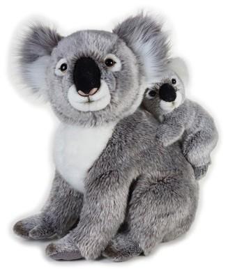 National Geographic Koala z dzieckiem