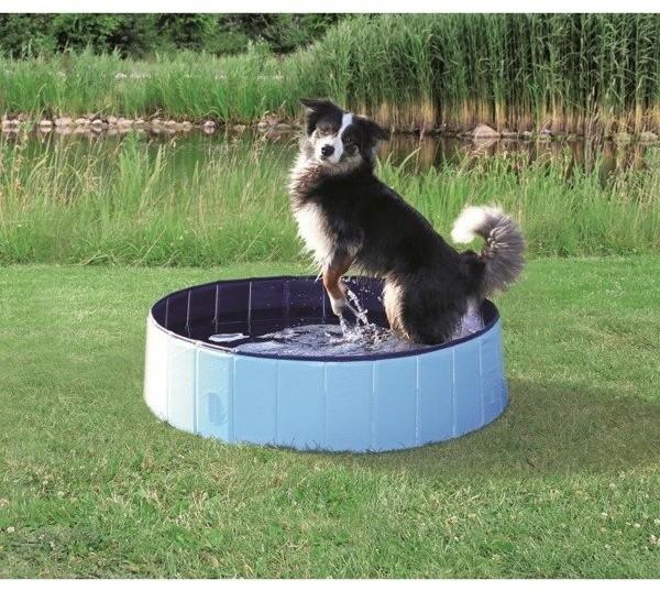Trixie Basen jasnoniebieski dla psa 160 x 30 cm