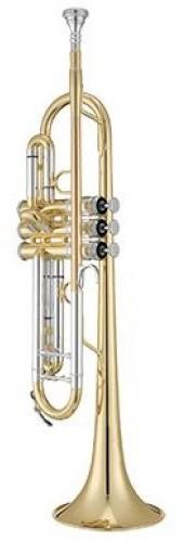 Xo Brass Xo Brass XO1602LS3