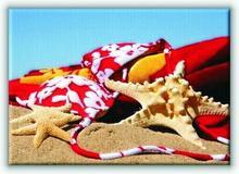 Rozgwiazda w piasku III - Obraz na płótnie