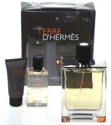 Hermes Terre D Hermes 100ml Woda toaletowa Zestaw