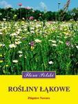 Flora Polski. Rośliny łąkowe