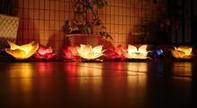 Lampiony wodne jednokrotnego użytku - komplet 5 sztuk