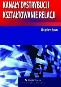 Zbigniew Spyra Kanały dystrybucji - kształtowanie relacji (wyd. II). Rozdział 4. Handel detaliczny w systemie dystrybucji na rynku produktów konsumpcyjnych w Polsce
