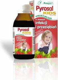 Herbapol Pyrosal Kids 100 ml